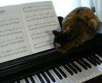 Piano2_4